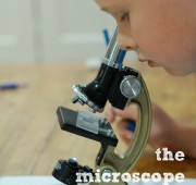Playful Learning: Using a Microscope
