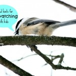 Helpful Hints for Successful Birdwatching with Kids