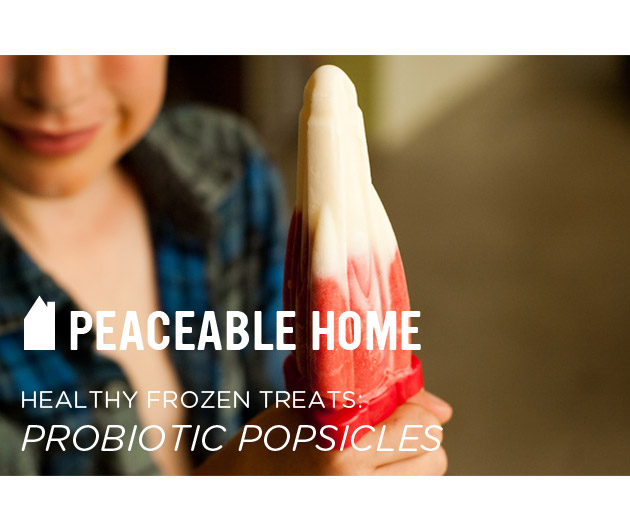 Peaceable Home....Healthy Frozen Treats: Probiotic Popsicles