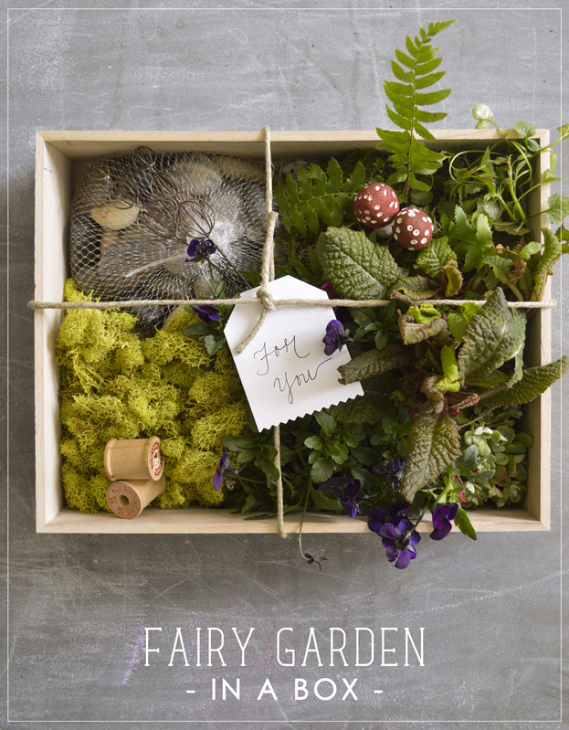 Fairy Garden in a Box Playful Learning