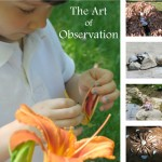 The Art of Observation