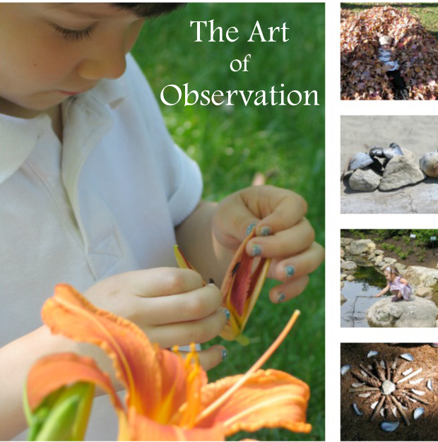 Playful Learning: The Art of Observation