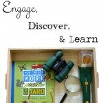 Creating Playful Spaces: Invitations to Engage, Discover, and Learn
