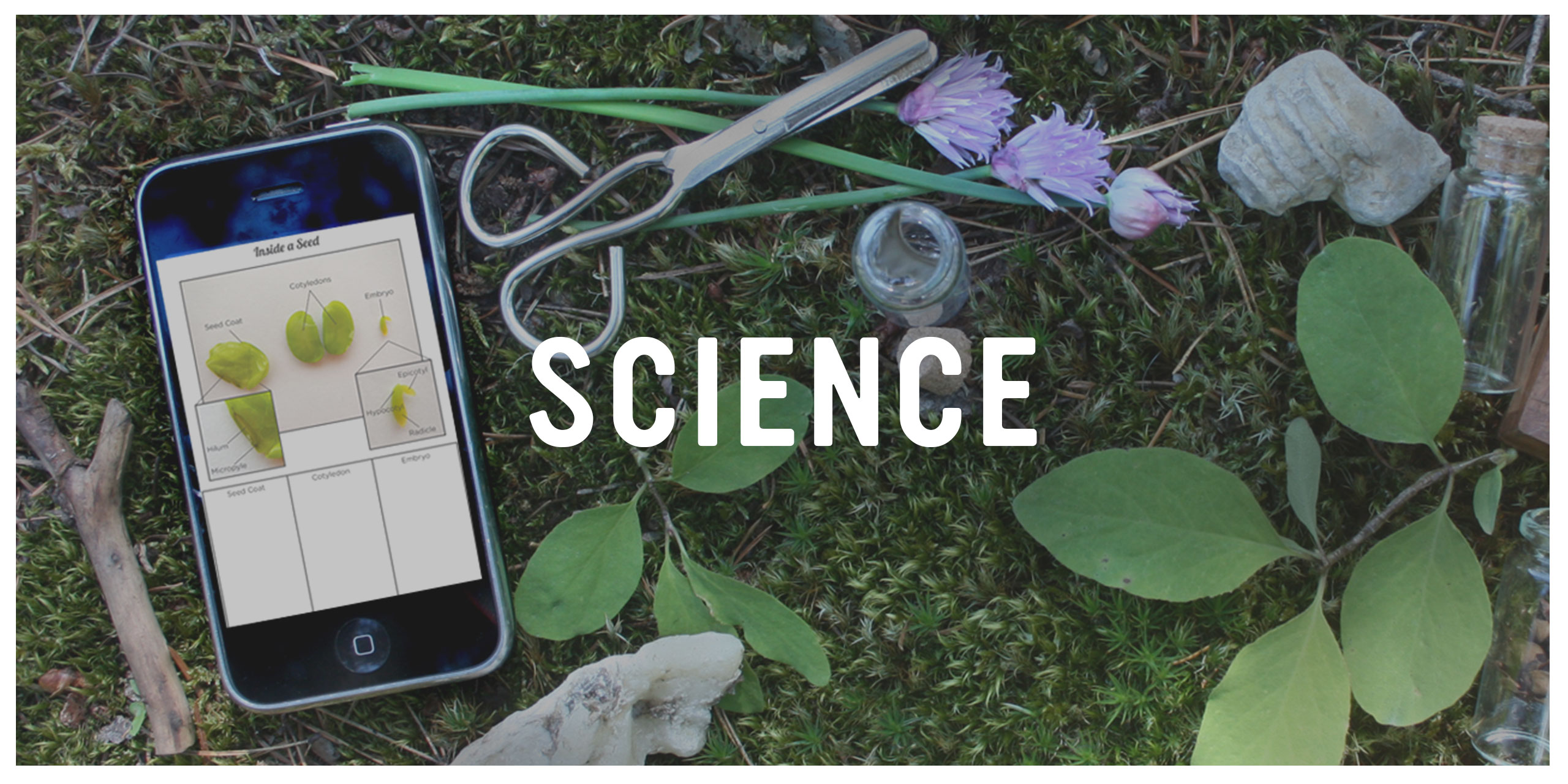 Playful Learning Studio: Science