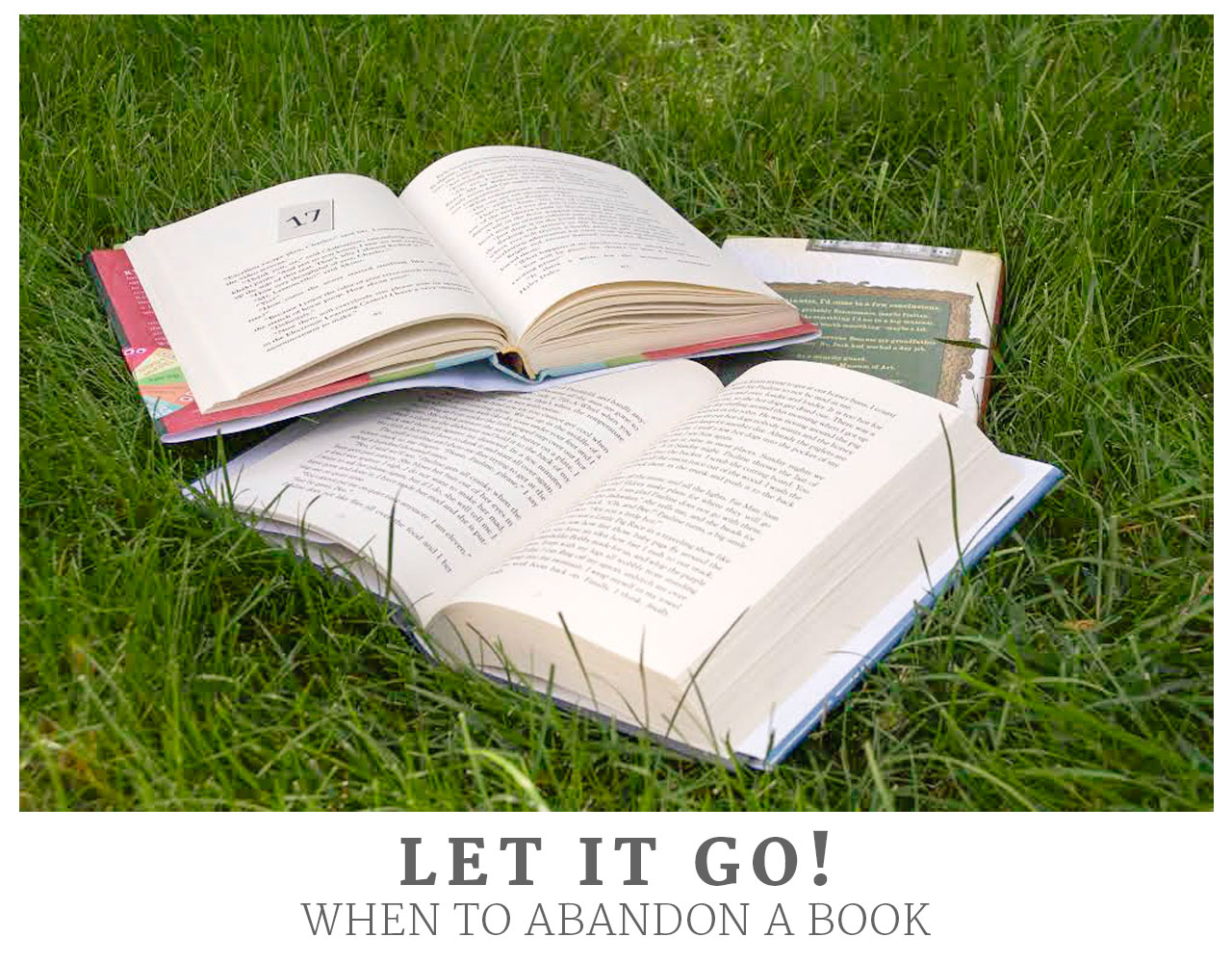 Let it Go! When to Abandon a Book