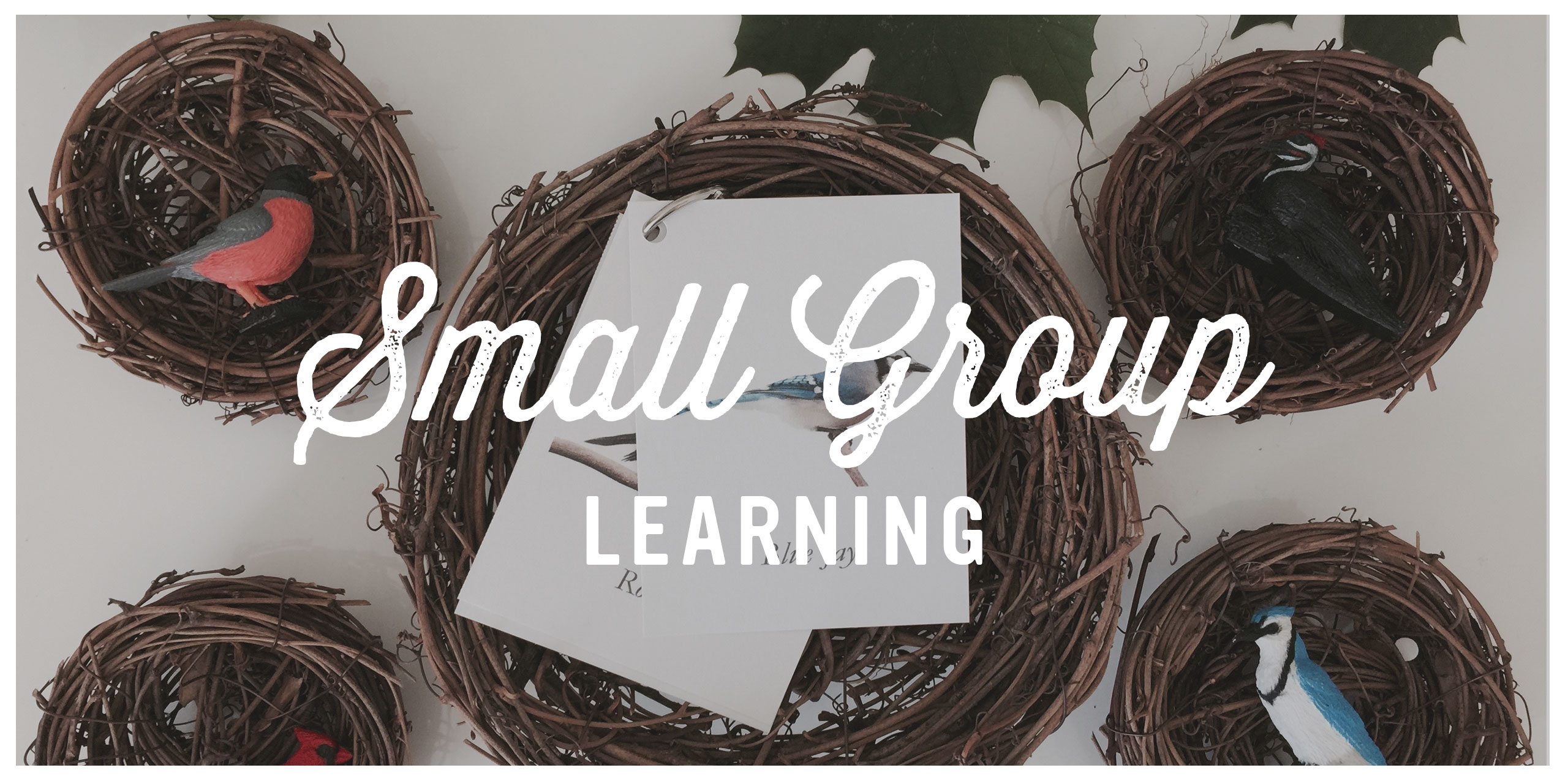 SmallGroupLearning