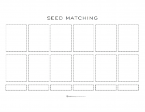 Playful Learning: Seed Matching II
