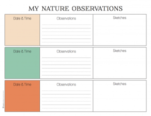 Nature Observations