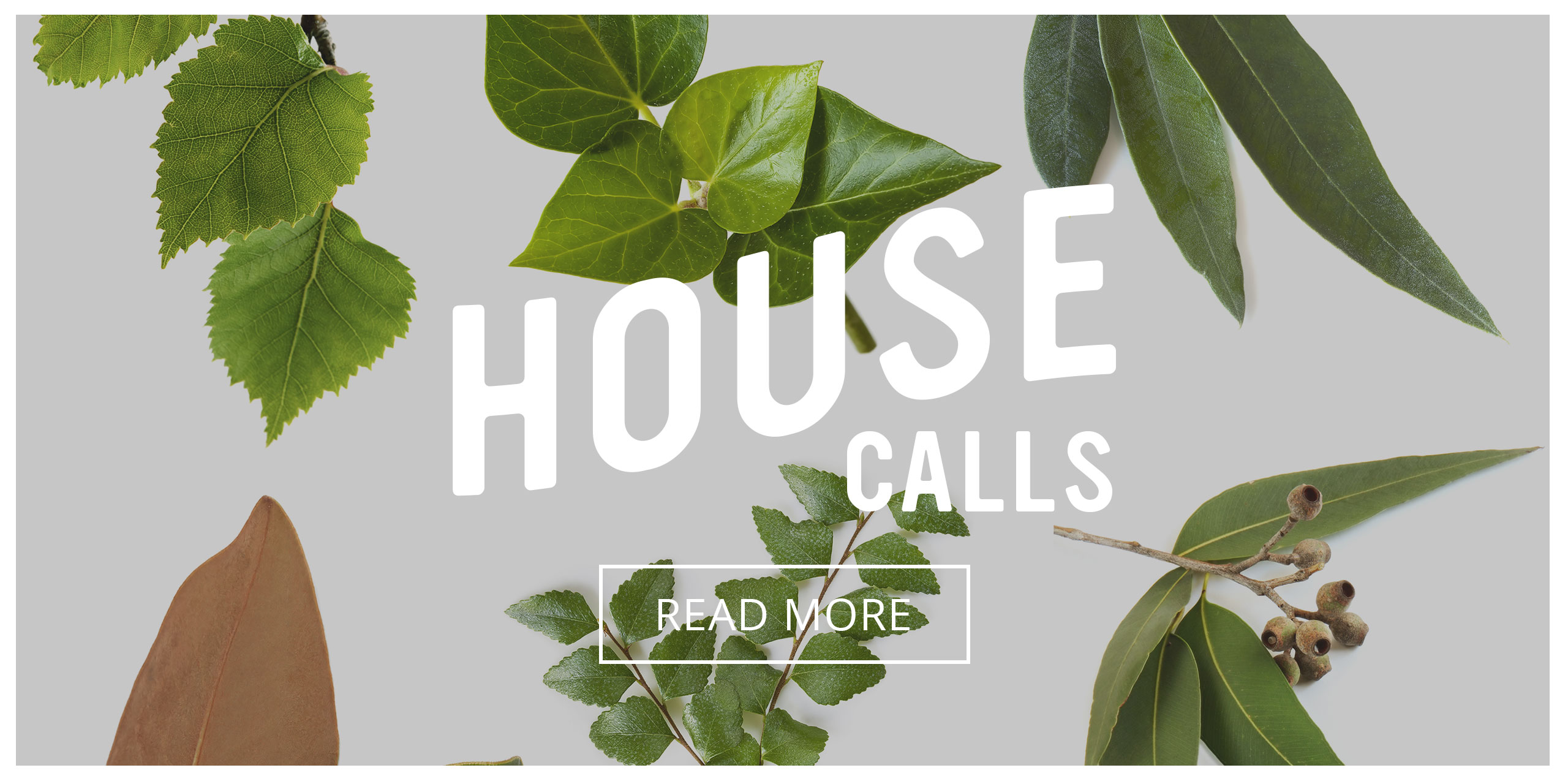 Playful Learning Studio: House Calls