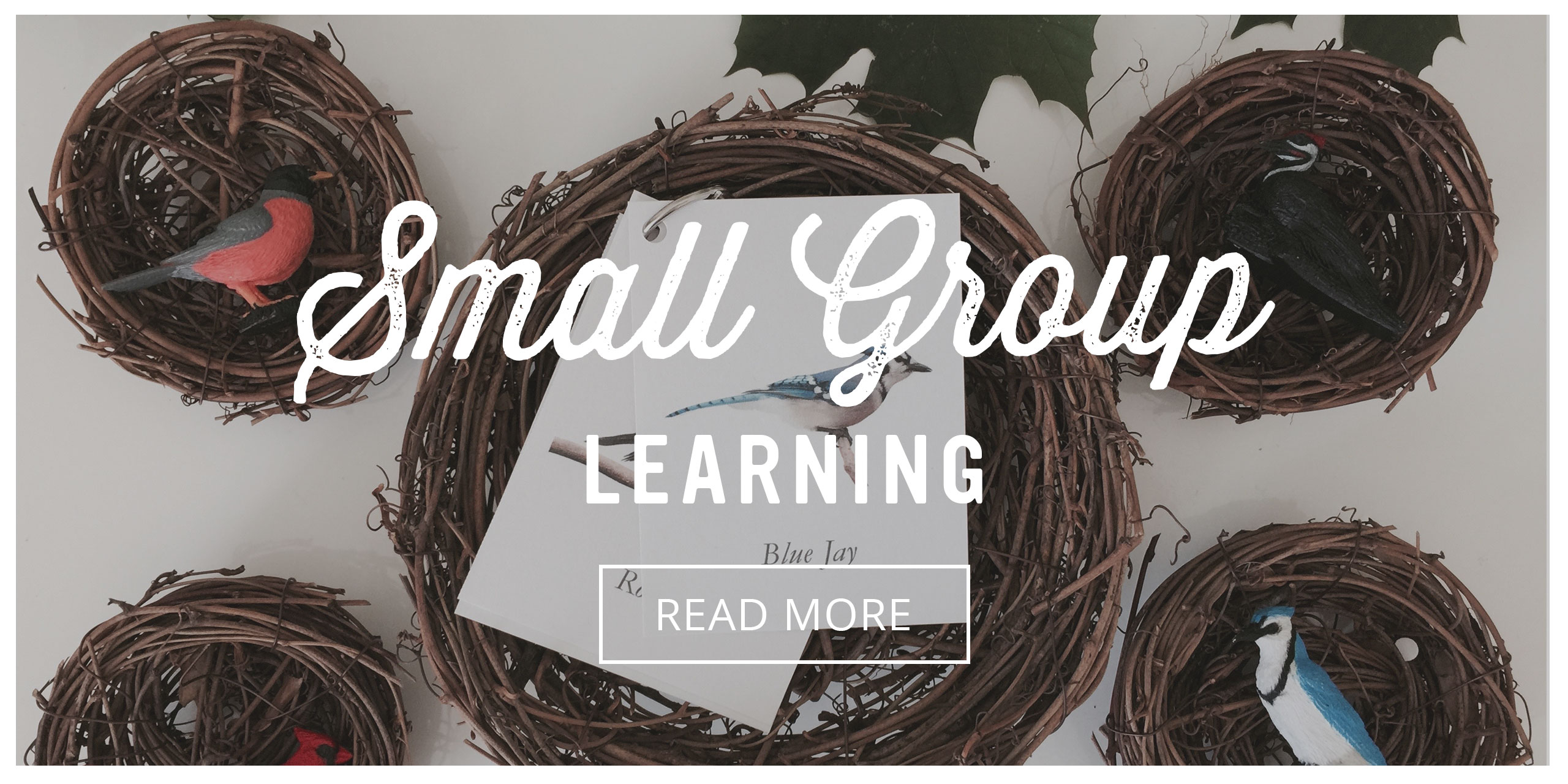 Playful Learning Studio: Small Group Learning