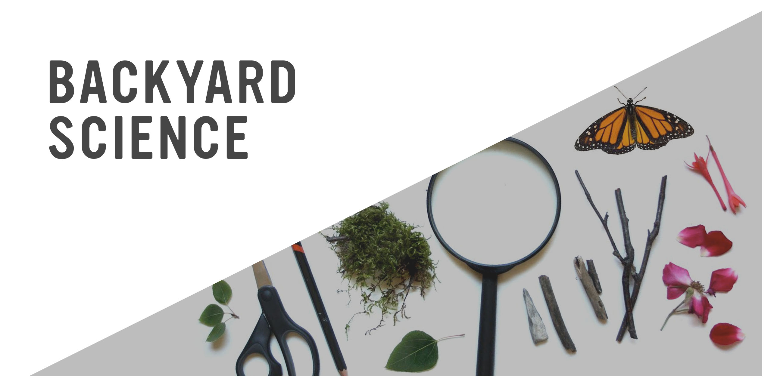 Playful Learning: Backyard Science