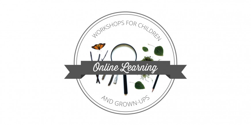 Playful Learning: Online Learning