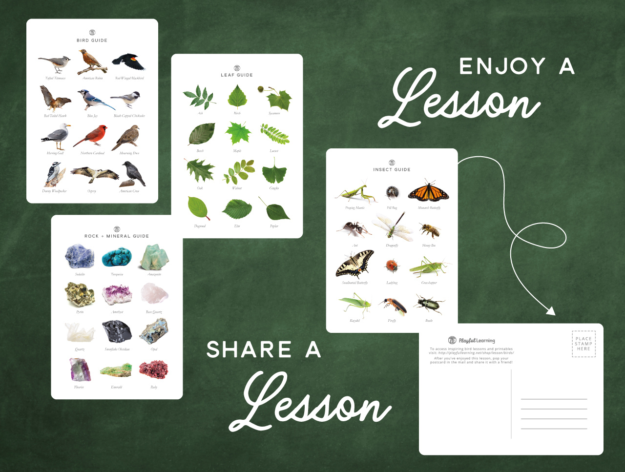 Playful Learning Field Guide Postcard Set