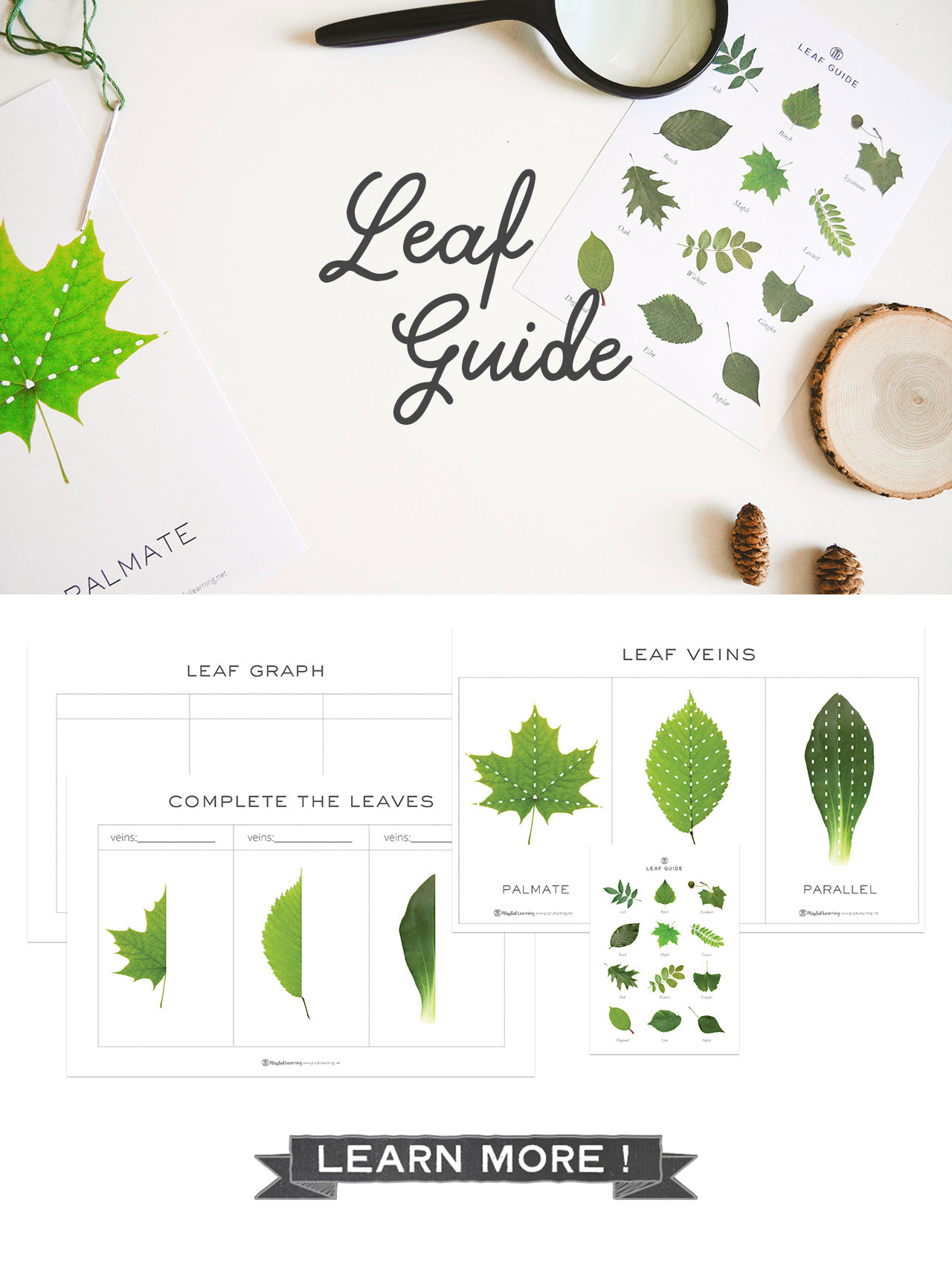 Playful Learning: Leaf Guide