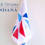 Dots and Stripes Bandana