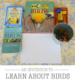 An Invitation to Learn About Birds