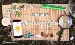Coming Soon! Summer Learning Labs