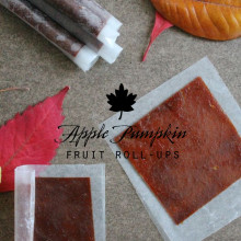 Homemade Apple Pumpkin Fruit Roll-Ups