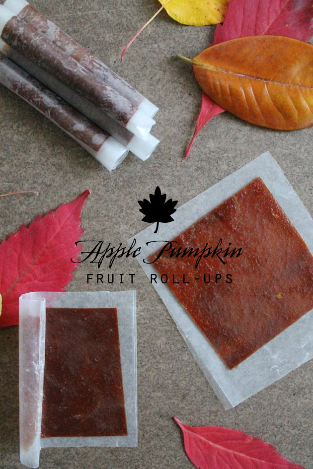 Apple Pumpkin Fruit Roll-Ups