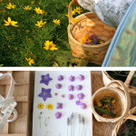 Stocking Up: Pressed Flowers